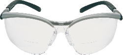 3M™ BX™ Readers Schutzbrille BXR02.5